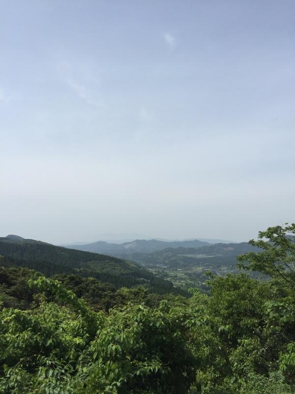 クラシックぶどう濱田農園