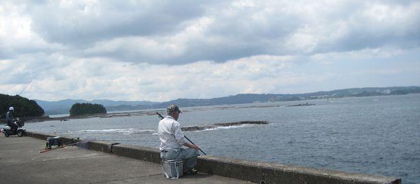 イカ釣りの光景