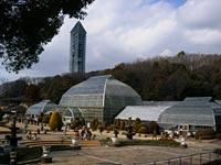 東山植物園の温室前館