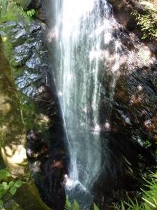 蜻蛉の滝中