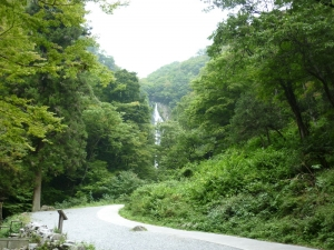 神庭の滝遠望