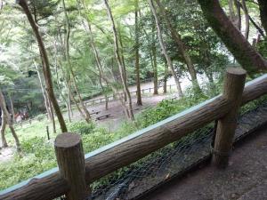 箕面の滝途中2