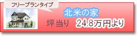 24,8万円〜