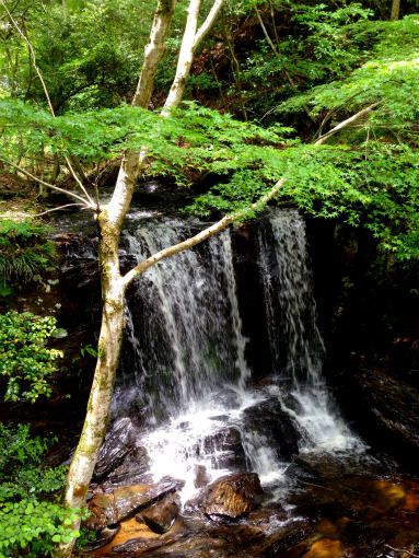 黒沢湿原の滝
