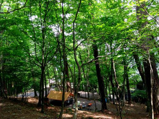大川山キャンプ場