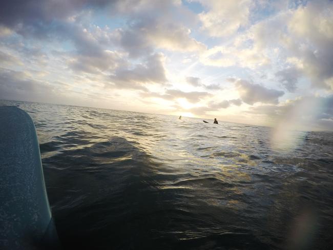 海 海 ハワイ.jpg