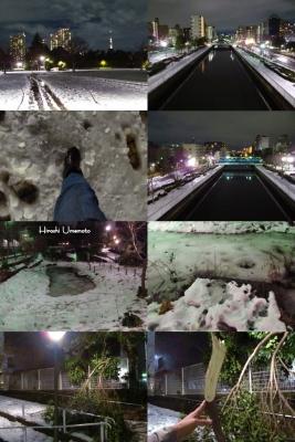 雪のエコスペース2