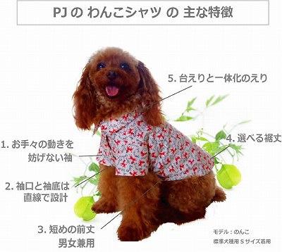 【わんこシャツWeb教室】