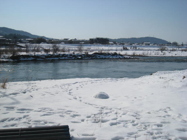 010五松橋直下流右岸.JPG