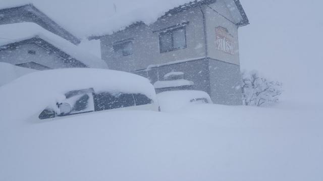 2月6日雪-1.jpg