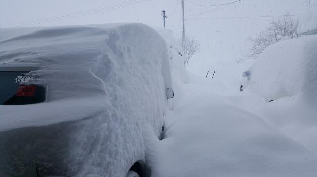 2月6日雪-2.jpg