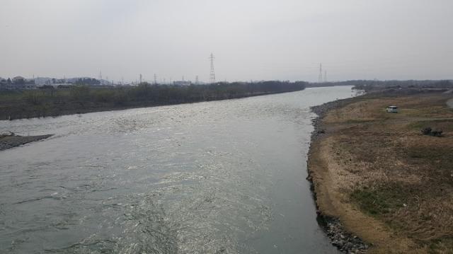 3月29日川写真ー2.jpg