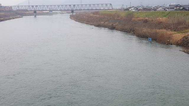 56.中角橋下流右岸側.jpg