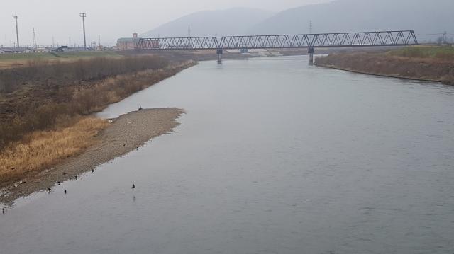 57.中角橋下流左岸側.jpg