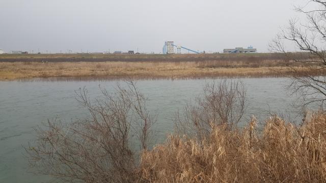 36.寺前水門前左岸.jpg