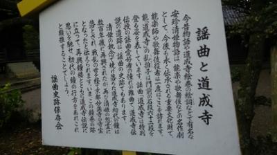 道明寺札.jpg