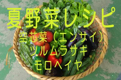 夏野菜_空ツルモロ.jpg