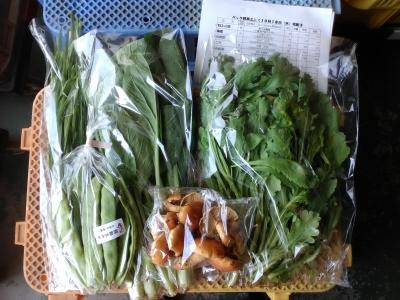 ミニパック野菜101018