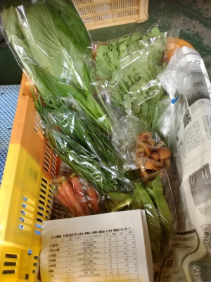パック野菜101018