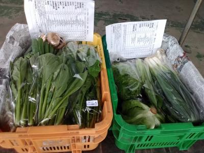 パック野菜181101