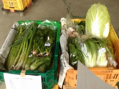 パック野菜100110