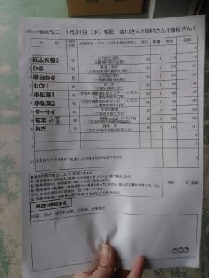 パック野菜ミニ190131中身