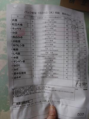 パック野菜190131中身