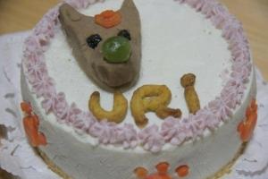 うりのケーキ
