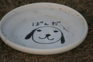 ぱんだディスク