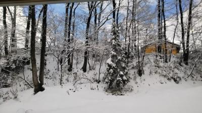 冬の晴れ間.jpg
