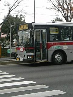 20061212_283197.jpg
