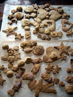 コーヒーココア.net 手作り型抜きクッキー