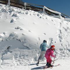 コーヒーココア.net 九重スキー場