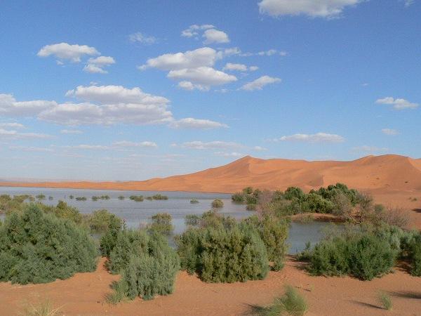 ラクダに乗って砂漠の中へ・・・