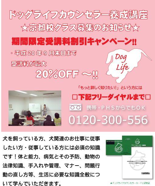 京都校開校キャンペーン