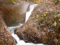 三段(魚止)の滝
