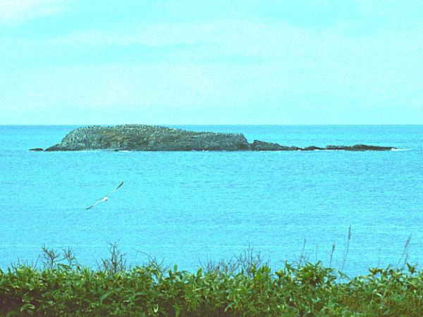 ゴメ島 | 道北の釣りと旅 ブログ