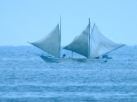 北海シマエビ打瀬網漁1