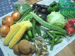 群馬の野菜たち