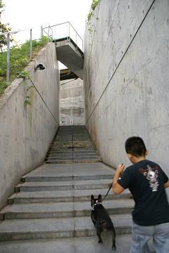 亀老山展望台 入り口