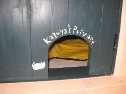 猫の部屋入口