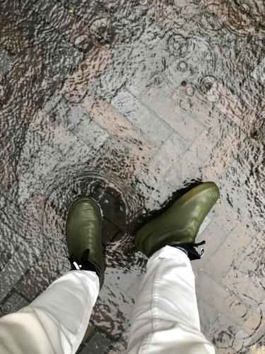 ac777be7c95a8 梅雨入りした東京。