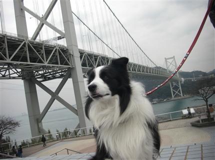 関門橋で・・・