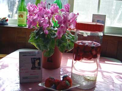 シューレビューオリジナル「イチゴ酒」