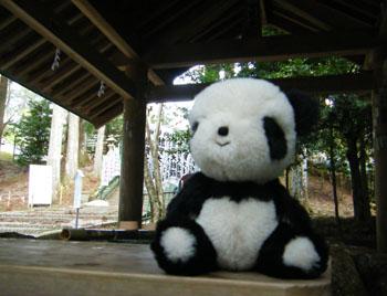 熊野本宮に来ました