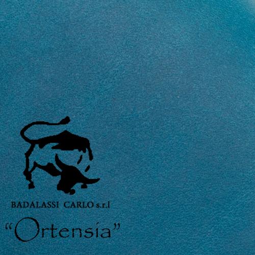 ortensia-500.jpg