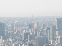スカイツリー 東京タワー