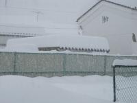 2014.2.15 大雪 1