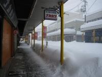 2014.2.15 大雪 3 ナカカツ