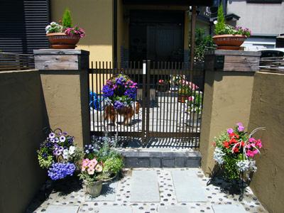 20125月の門